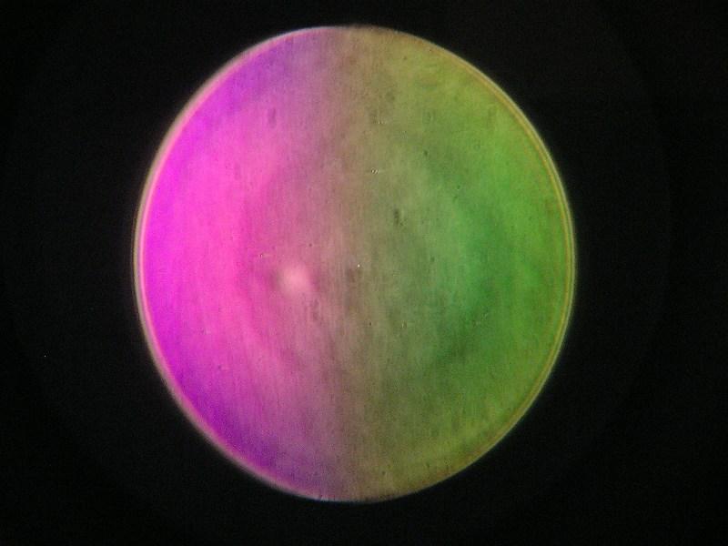 Genesis07.jpg